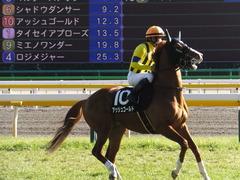 20150221 東京10R アメジストS(1600) アッシュゴールド 14
