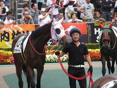 20170611 東京6R 2歳牝馬メイクデビュー サラート 02
