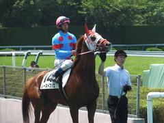 20160618 阪神8R 3歳上牝馬500万下 レーヌドブリエ 21