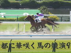 20150425 京都1R 3歳未勝利 ノアズアーク 13