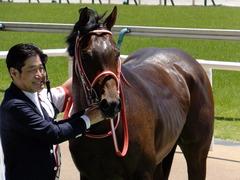 20170604 東京4R 3歳未勝利 ホウオウドリーム 38