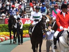20160514 東京5R 3歳牝馬未勝利 ツボミ 16