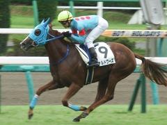 20180922 中山2R 2歳牝馬未勝利 ヴァルドワーズ 15