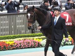 20141108 東京11R 京王杯2歳S マイネルグルマン 08