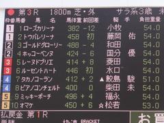 20150404 阪神4R 3歳未勝利 レーヌドブリエ 02