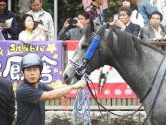 20181013 東京9R プラタナス賞 2歳(500) ロークアルルージュ 14