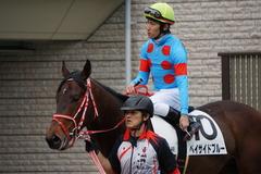 20200215 東京4R 3歳1勝クラス ベイサイドブルー 15
