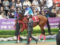 20190427 東京11R 青葉賞(G2) アドマイヤスコール 13