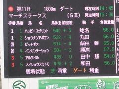 20170326 中山11R マーチS(G3) ショウナンアポロン 01