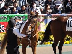 20170219 東京6R 3歳500万下 ブリラーレ 10
