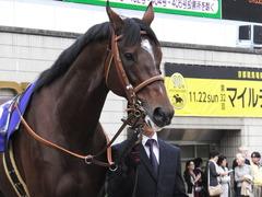 20151122 京都11R MCS(G1) モーリス 09