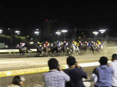 20140730 大井11R 重賞 グランディオーソ 11