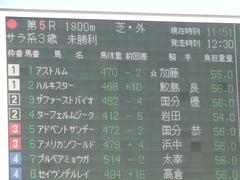 20180113 京都5R 3歳未勝利 ハルキスター 02