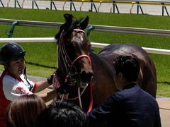 20170604 東京4R 3歳未勝利 ホウオウドリーム 33