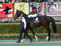 20190216 東京9R フリージア賞 3歳500万下 ホウオウサーベル 12