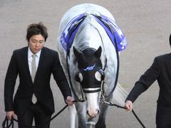 20131222 有馬記念 ゴールドシップ 03