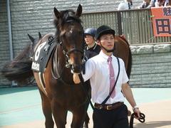 20180527 東京8R 青嵐賞(1000) パリンジェネシス 10