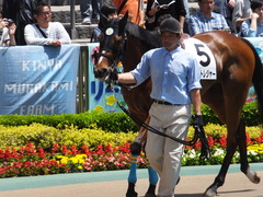20170506 東京5R 3歳牝馬500万下 ビルズトレジャー 05