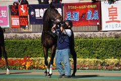 20191110 東京2R 2歳牝馬未勝利 ミヤコシャンティ 13