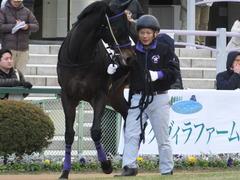 20170114 京都8R 4歳上牝馬500万下 サラマンカ 07