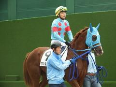 20180922 中山2R 2歳牝馬未勝利 ヴァルドワーズ 13