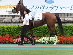 20170625 東京1R 3歳牝馬未勝利 プンメリン 11