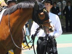 20140517 東京4R レッドリベリオン 05