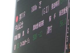 20190224 中山11R 中山記念(G2) マイネルサージュ 01
