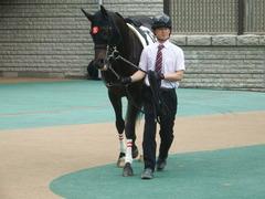 20190518 東京5R 3歳未勝利 ショウナンサジン 03