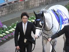 20131222 有馬記念 ゴールドシップ 02