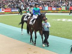 20141130 東京3R 2歳未勝利 トーセンカナロア 11