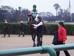 20181202 中山12R (1000) ラッシュアタック 19