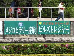 20170506 東京5R 3歳牝馬500万下 ビルズトレジャー 01
