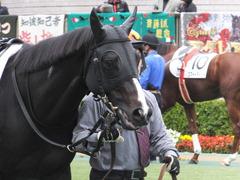 20151123 東京6R 3歳上500万下 ファインライナー 06