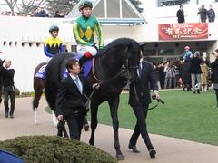 20141228 中山10R 有馬記念 サトノノブレス 05