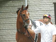 20181008 東京4R 2歳メイクデビュー ストレートパンチ 03