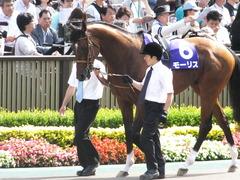 20150607 東京11R 安田記念(G1) モーリス 01