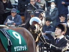 20180114 中山11R 京成杯(G3) ダブルシャープ 12