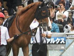 20180930 中山9R サフラン賞 2歳牝馬500万下 ポリアンサ 13