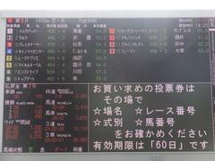 20170225 阪神9R 丹波特別(500) レーヌドブリエ 02