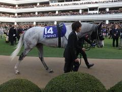 20141228 中山10R 有馬記念 ゴールドシップ 05