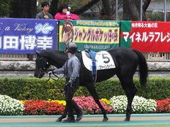 20151123 東京6R 3歳上500万下 ファインライナー 04