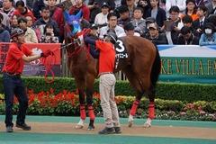 20191124 東京10R ウェルカムS (3勝) アドマイヤスコール 11