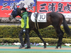 20160130 東京4R 3歳未勝利 アタンドリール 09