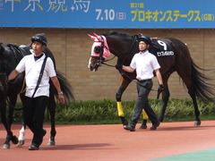 20160710 中京10R 木曽川特別(1000) ビップレボルシオン 09
