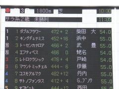 20141130 東京3R 2歳未勝利 トーセンカナロア 16