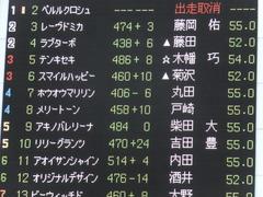 20170618 東京7R 33歳上500万下 ホウオウマリリン 01
