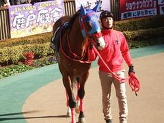 20190127 東京9R セントポーリア賞(500) アドマイヤスコール 09