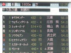 20180421 東京6R 3歳未勝利 ウェディングベール 01