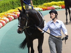 20160514 東京5R 3歳牝馬未勝利 ツボミ 07